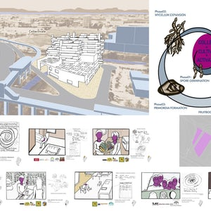 ARCH497 NOMA Siit STUDENT DESIGN COMPETITION ENTRY LESLIE JOHNSON see course desc for student names 1